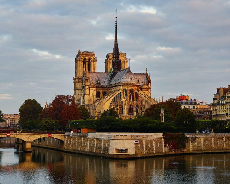 Фото бесплатно Собор Парижской Богоматери, Notre-Dame de Paris, Paris, France, Париж, Франция, город
