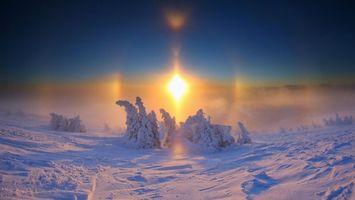 Бесплатные фото зима,мороз,деревья,снег,небо,солнце