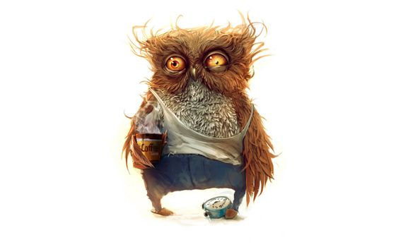 Photo free not slept owl, drowsy eyes, feathers upright