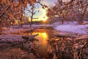Бесплатные фото закат, зима, речка, лес, деревья, пейзаж