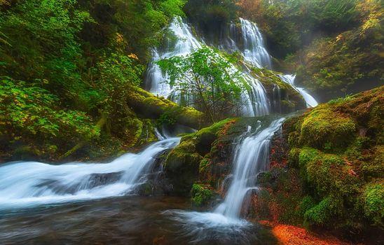 Panther Creek Falls, Columbia River Gorge, Skamania, Washington, ущелье реки Колумбия