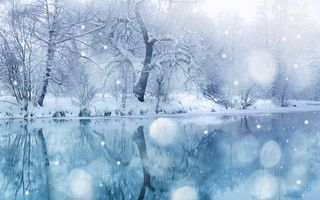 Бесплатные фото зима,река,отражение,деревья,снег,снежинки