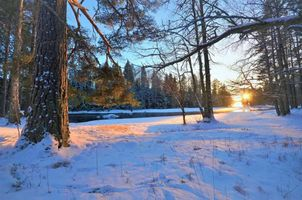 Бесплатные фото зима,закат,лес,деревья,речка,природа,пейзаж