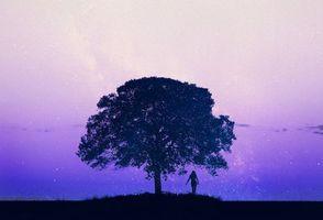 Фото бесплатно девушка, дерево, 3d