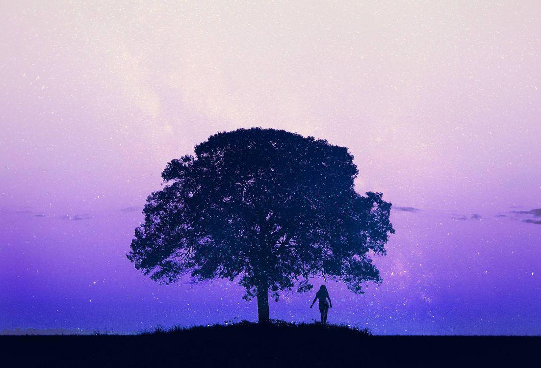 Фото бесплатно девушка, дерево, 3d, art, рендеринг