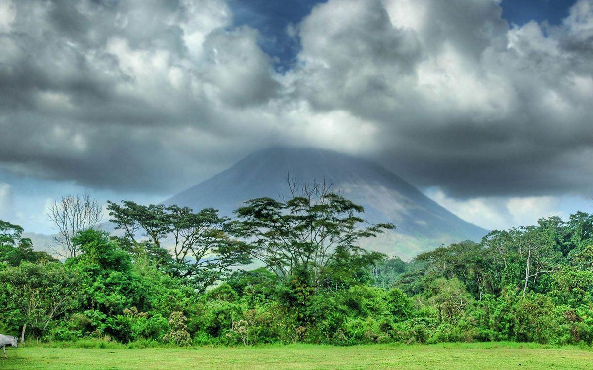 Фото бесплатно гора, вулкан, облака, деревья, кустарник, трава, природа