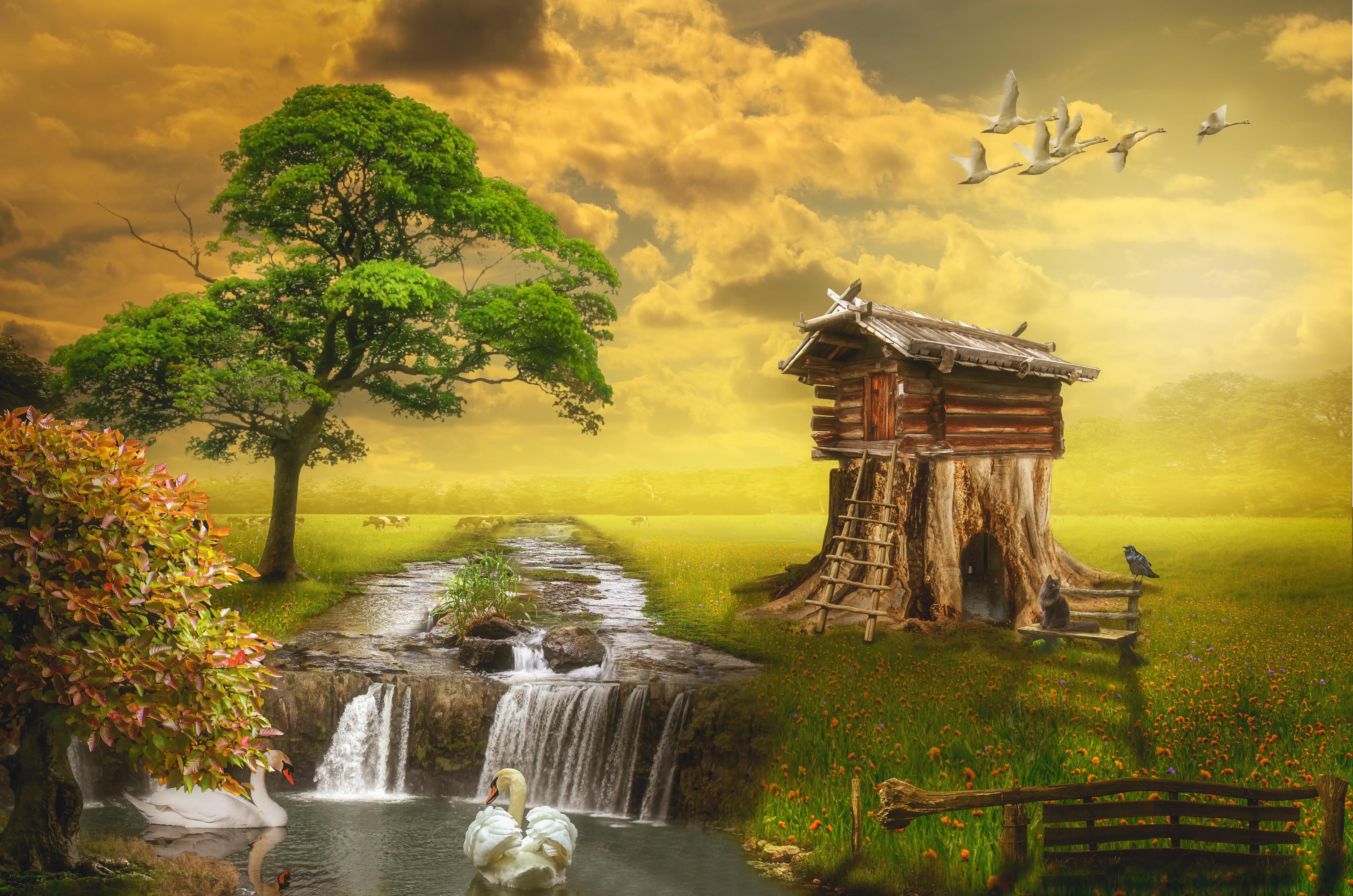 Обои поле, река, водопад, деревья