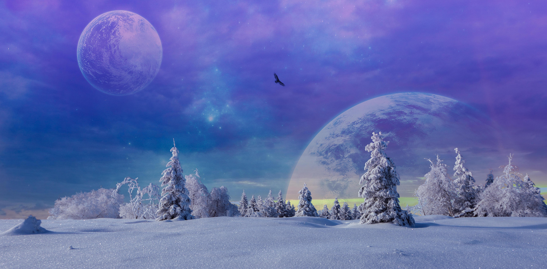 Обои зима, закат, снег, деревья