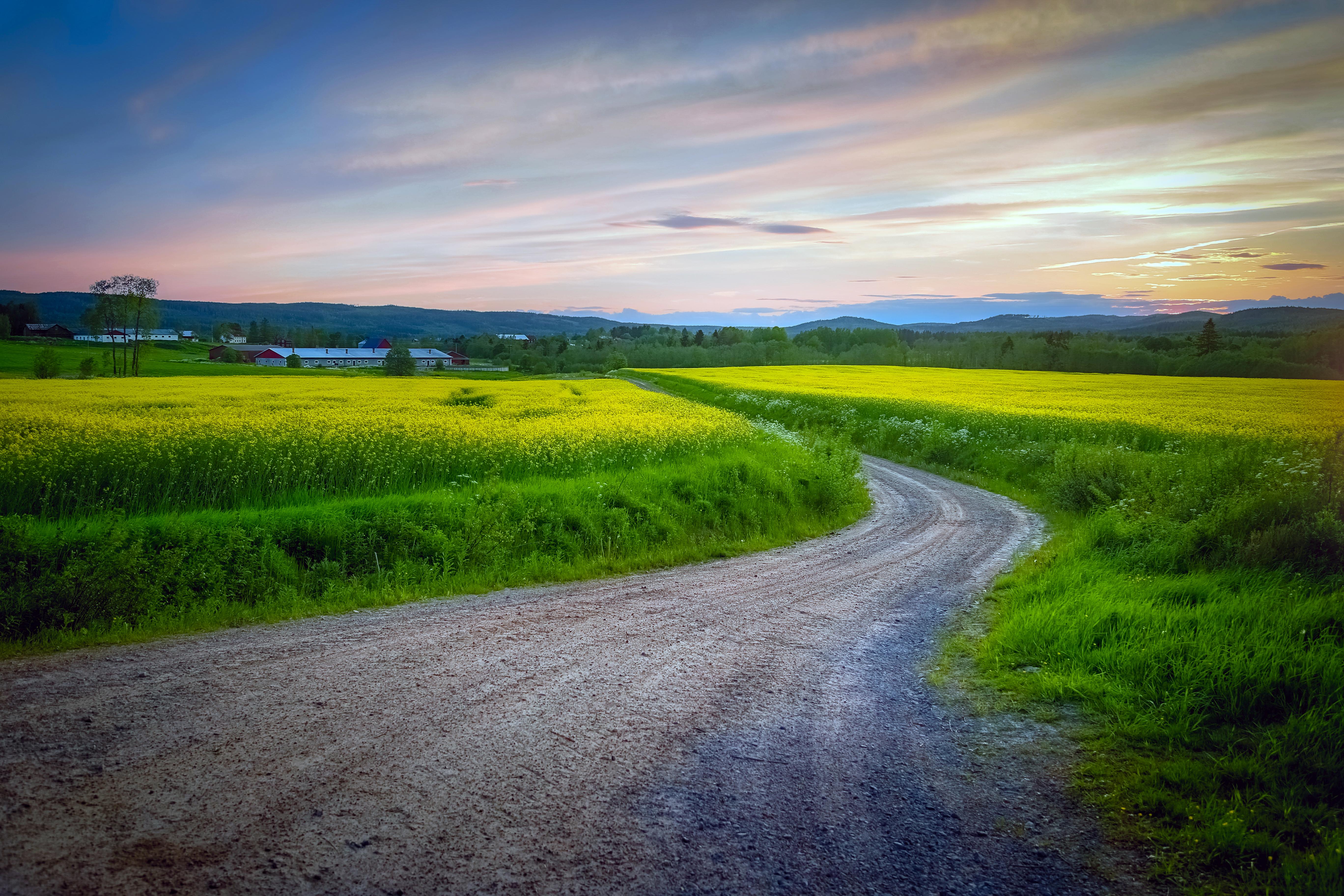 Вэрмланд, Швеция, поле