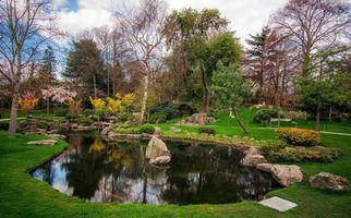 Бесплатные фото Лондон,Киото,Японский сад,Holland Park,Zen Garden,водоём,пейзаж