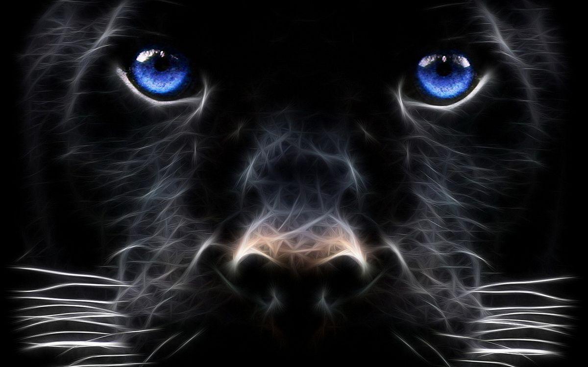Фото бесплатно собака, морда, глаза, голубые, нос, усы, 3d графика