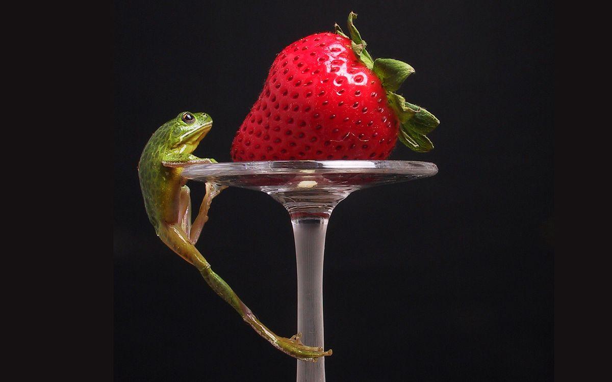 Фото бесплатно фужер, ножка, ягода - на рабочий стол