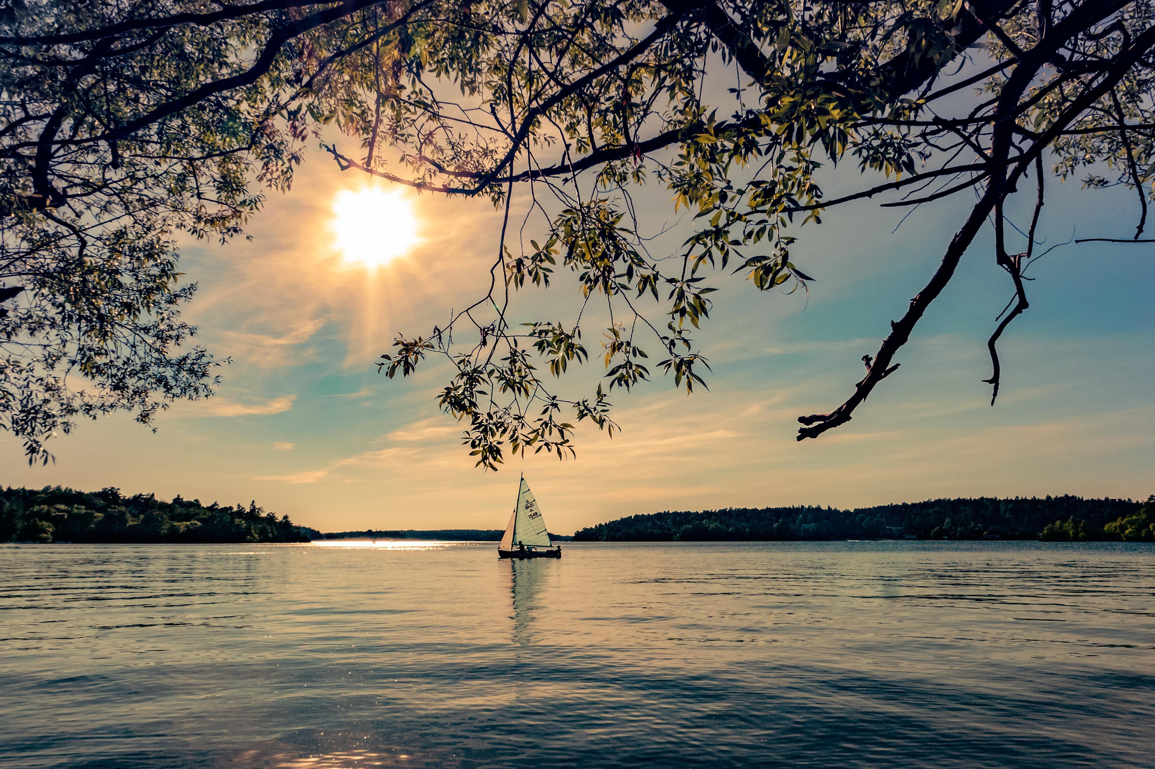 Обои озеро, лодка, парусник, ветки деревьев