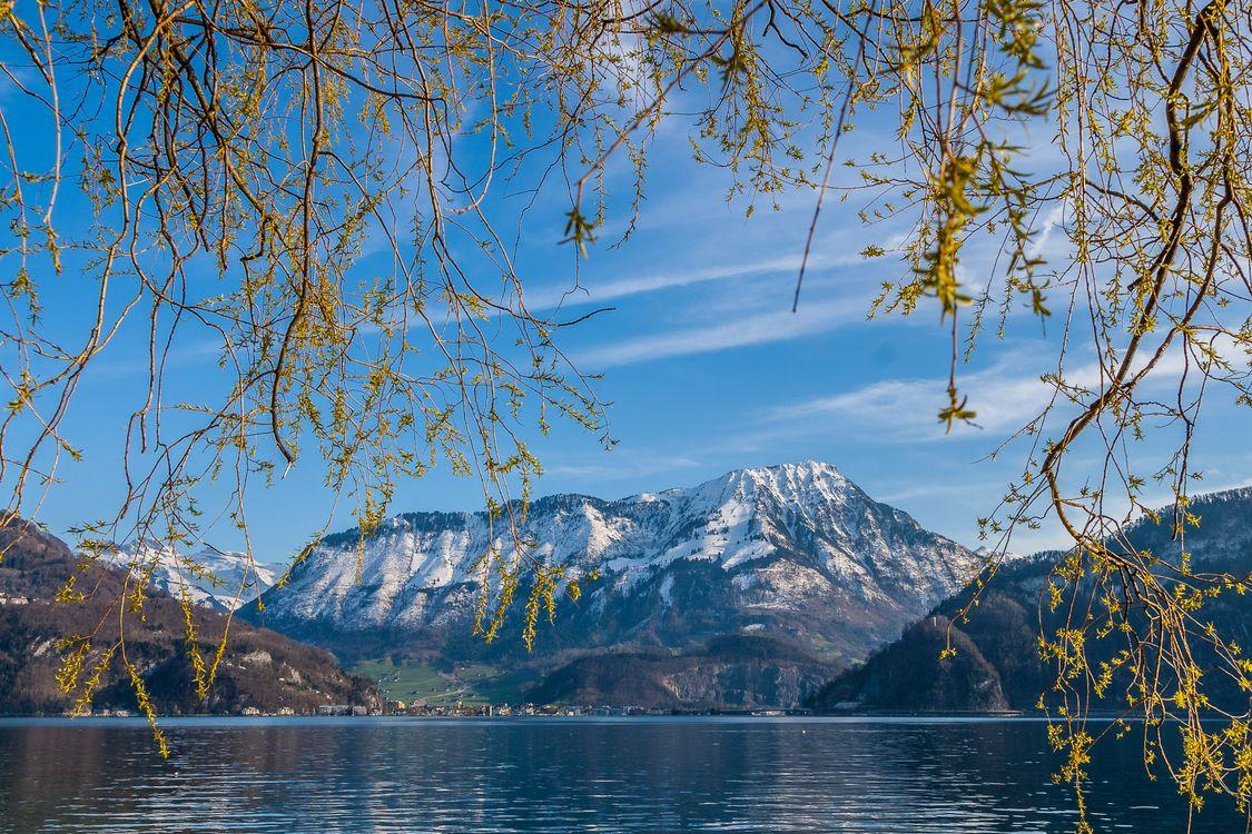 Фото бесплатно Озеро Люцерн, Люцерн, Швейцария, пейзажи