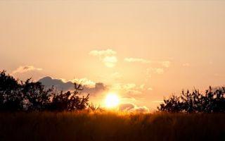 Фото бесплатно закат, солнце, трава