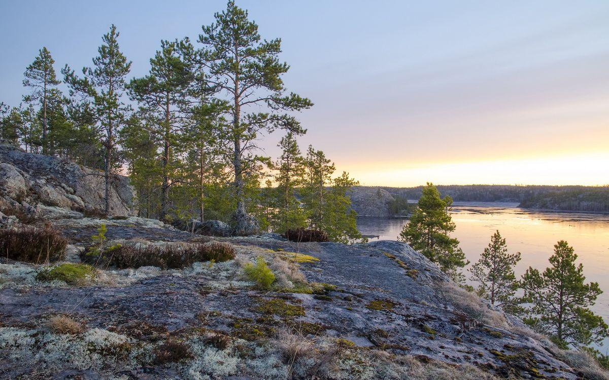 Фото бесплатно скалы, камни, мох, деревья, река, небо, природа