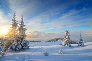 Фото бесплатно тропинка, зима, горы