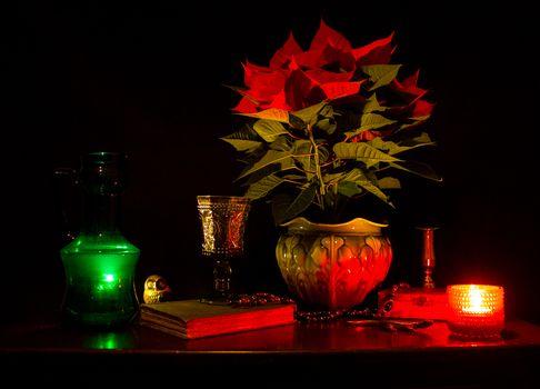 Фото бесплатно свеча, горшок, растение
