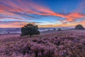 Фото бесплатно закат, холмы, поля