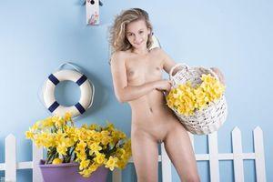 Заставки Sabina, красотка, голая, голая девушка, обнаженная девушка, позы, поза