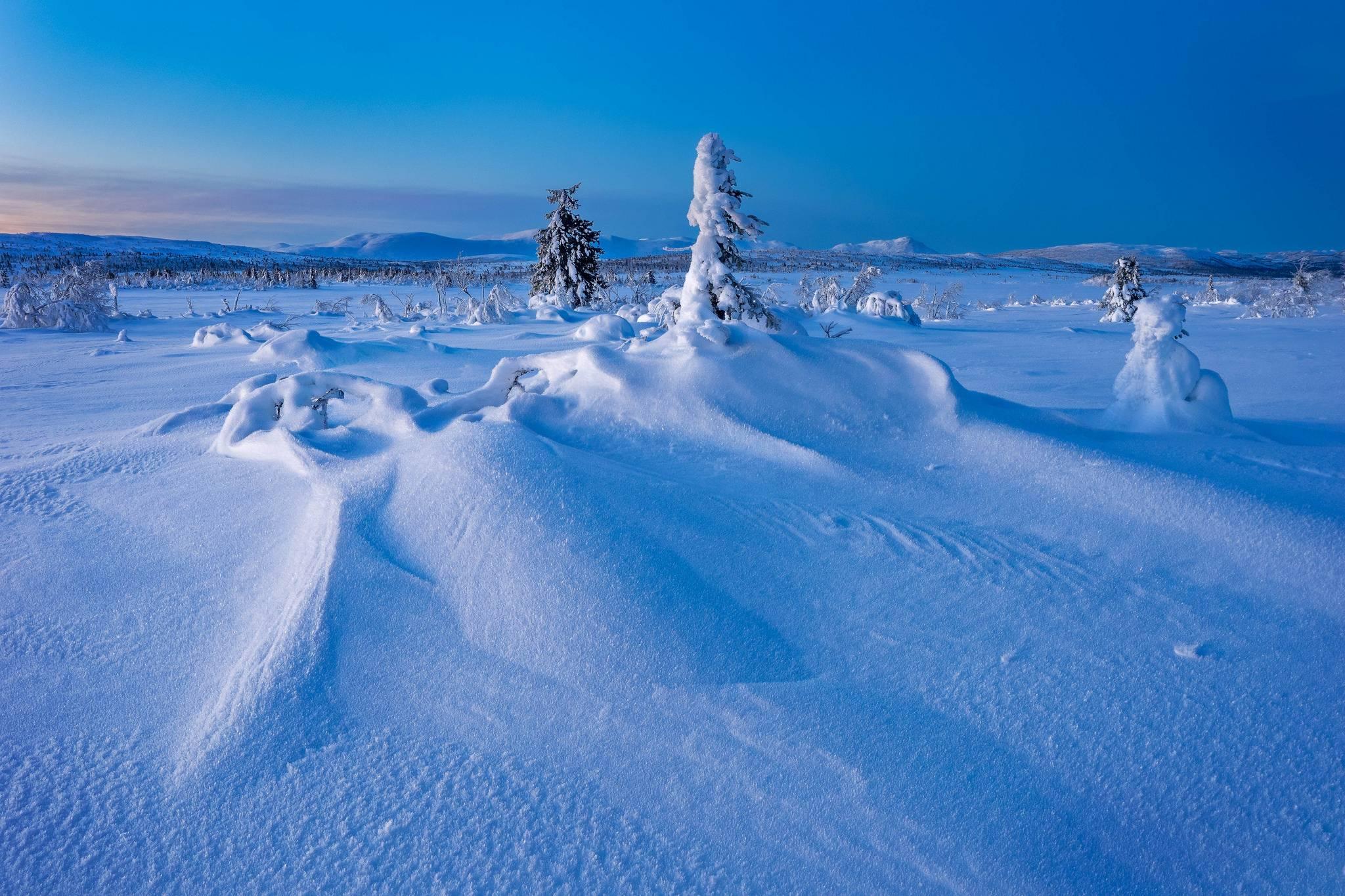 Gitsfjallets nature reserve, Lapland, Sweden