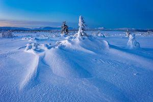 Фото бесплатно Gitsfjallets nature reserve, Lapland, Sweden