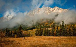 Заставки горы, осень, деревья, лес