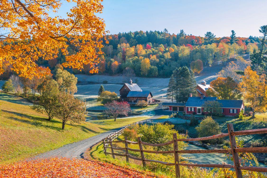 Картинка New England, Vermont, осень, холмы, поля, дома, деревья, пейзаж на рабочий стол. Скачать фото обои пейзажи