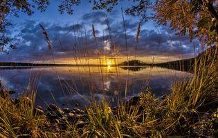 Бесплатные фото озеро, закат, деревья, пейзаж