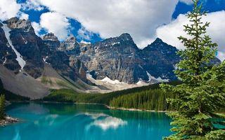 Бесплатные фото озеро,деревья,лес,горы,скалы,снег,небо