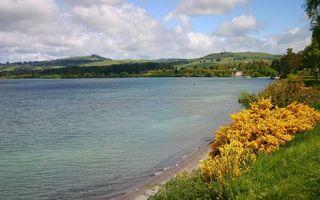 Бесплатные фото берег,озеро,трава,кустарник,деревья,холмы,небо