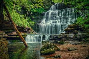 Бесплатные фото лес, деревья, речка, водопад, скалы, природа, пейзаж