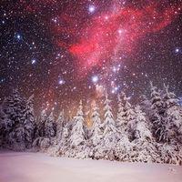 Фото бесплатно снег, деревья, сияние