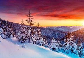 Бесплатные фото закат,зима,снег,деревья,сугробы,горы,пейзаж