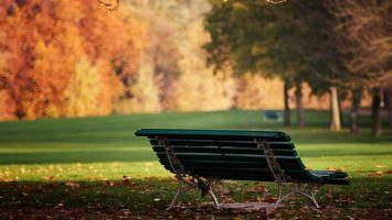 Photo free park, bench, grass