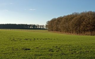 Бесплатные фото поле,трава,пастбище,ограждение,деревья,небо