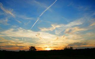Бесплатные фото вечер,деревья,макушки,солнце,закат,небо,облака