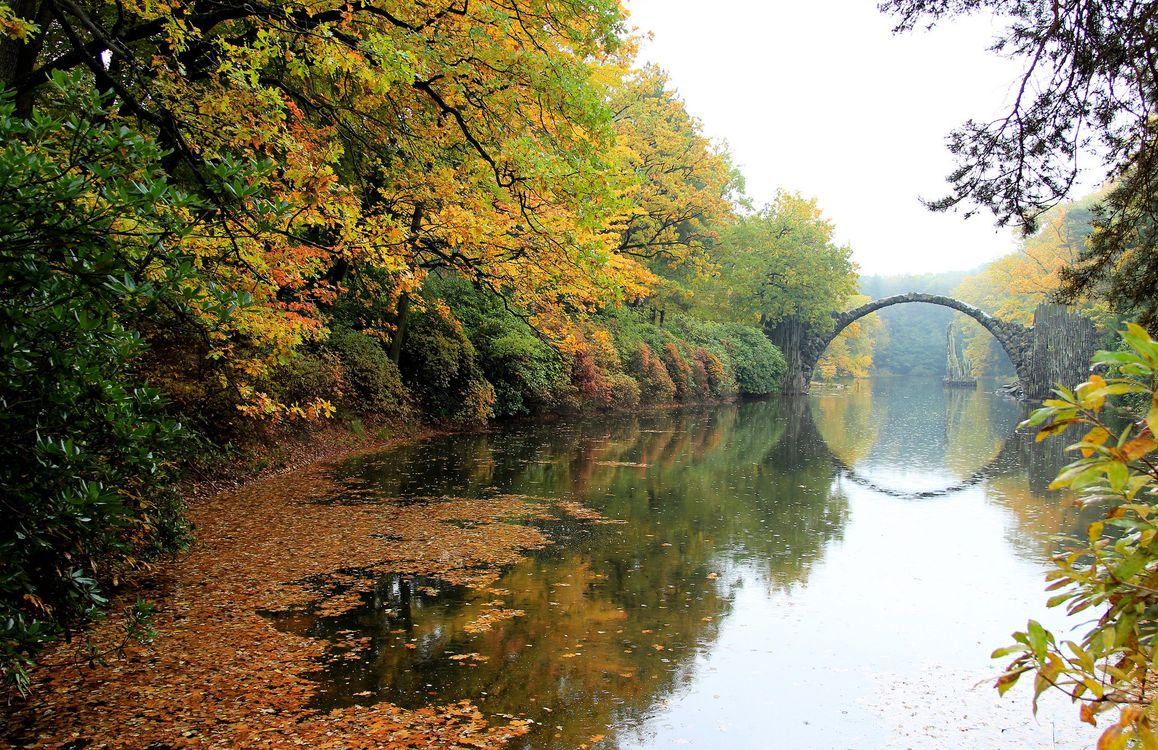 Фото бесплатно Рододендронпарк Кромлау, река, осень - на рабочий стол