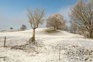 Бесплатно поле, холмы - фото красивые