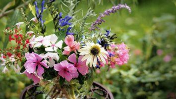 Заставки ваза,букет,лепестки,цветные,стебли,листья