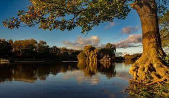 Бесплатные фото закат, река, деревья, пейзаж