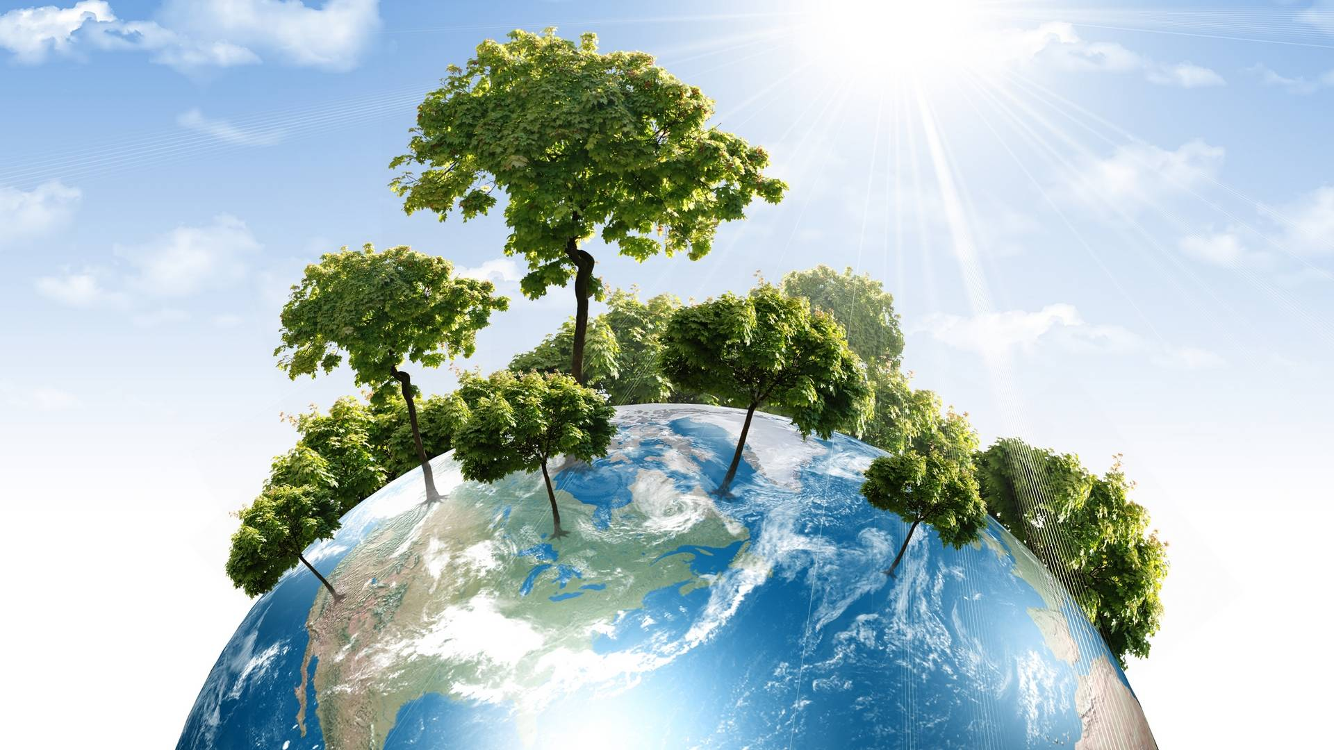 обои планета Земля, деревья, солнце, небо картинки фото