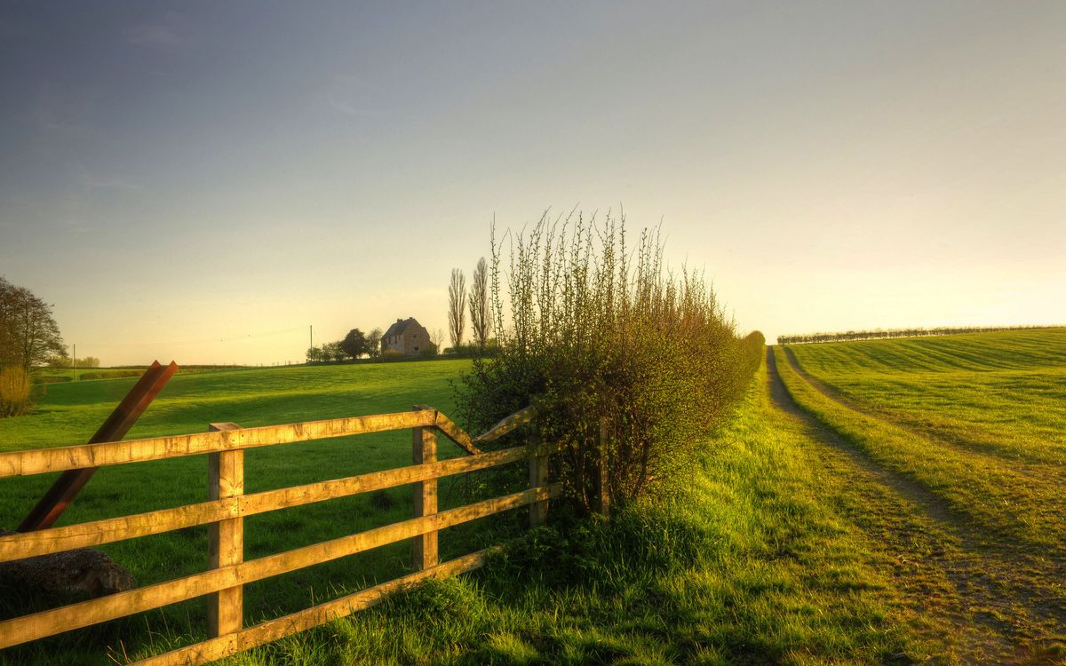 Фото бесплатно дом, деревья, поля, забор, кустарник, дорога полевая, пейзажи