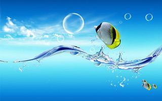 Фото бесплатно рыба, вода, пузыри, брызги, небо, рыбки