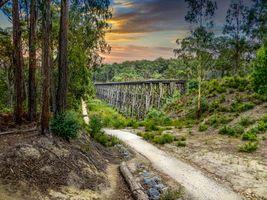 Обои эстакада, штат Виктория, Австралия, мост, дорога, лес, деревья, закат, пейзаж