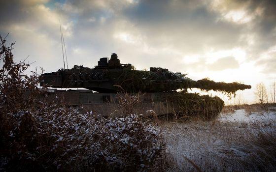 Бесплатные фото танк,маскировка,антенны,поле,трава,кустарник,снег