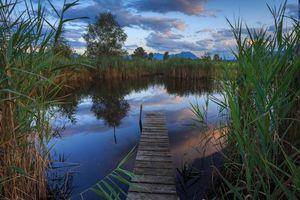 Бесплатные фото закат,озеро,мостик,небо,деревья,пейзаж