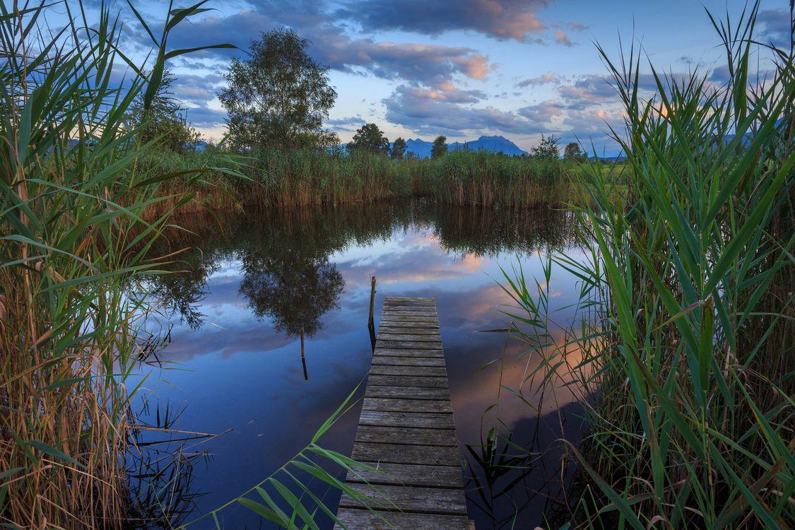 Фото бесплатно закат, озеро, мостик, небо, деревья, пейзаж, пейзажи