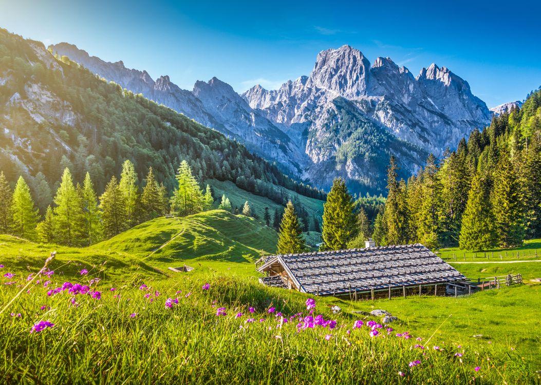 Фото бесплатно Alps, Switzerland, горы, холмы, деревья, домик, пейзаж - на рабочий стол