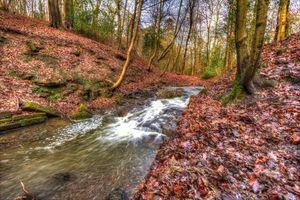 Заставки осень,река,лес,деревья,природа